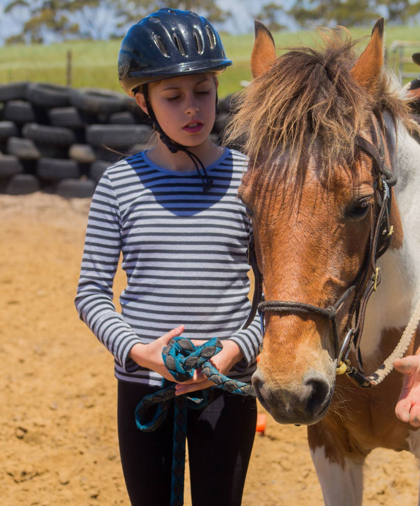 Equine Assissted Therapy